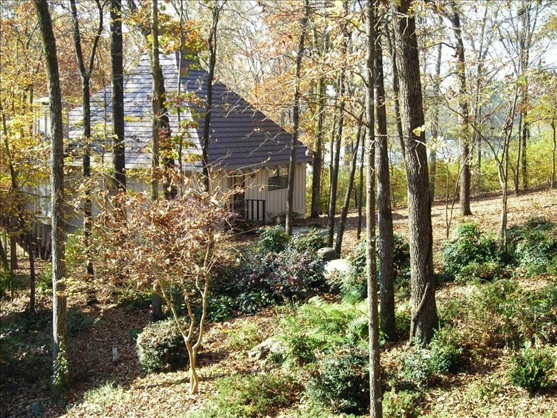 Serenity House on Lake Catherine with Private Boat/Swim Dock, holiday rental in Hot Springs