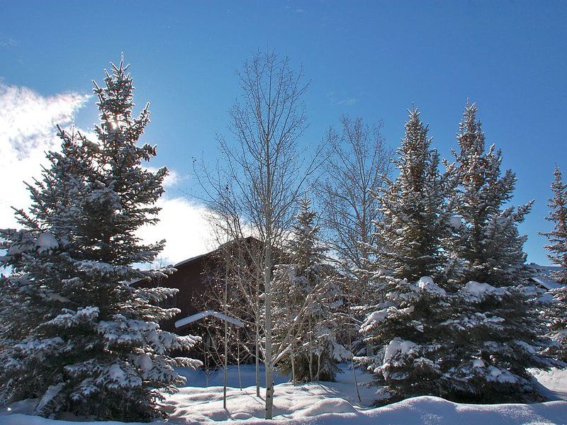Magnificent Canyon View Home, Pet Friendly, Huge Deck with Hot Tub, vacation rental in Pagosa Springs