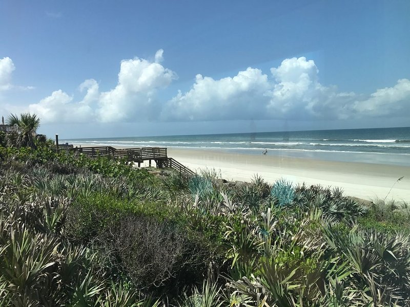 Watch marine life from your private ocean deck!, vacation rental in New Smyrna Beach