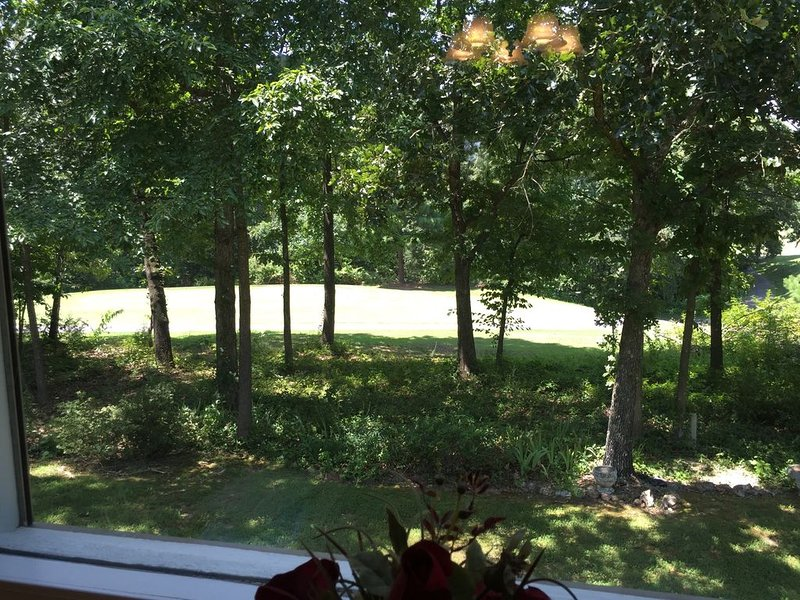 View from sunroom