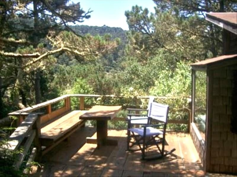 Quiet Romantic Cottage Nestled in Woods/ Hiking/Beach/Dogs Ok, location de vacances à Point Reyes Station