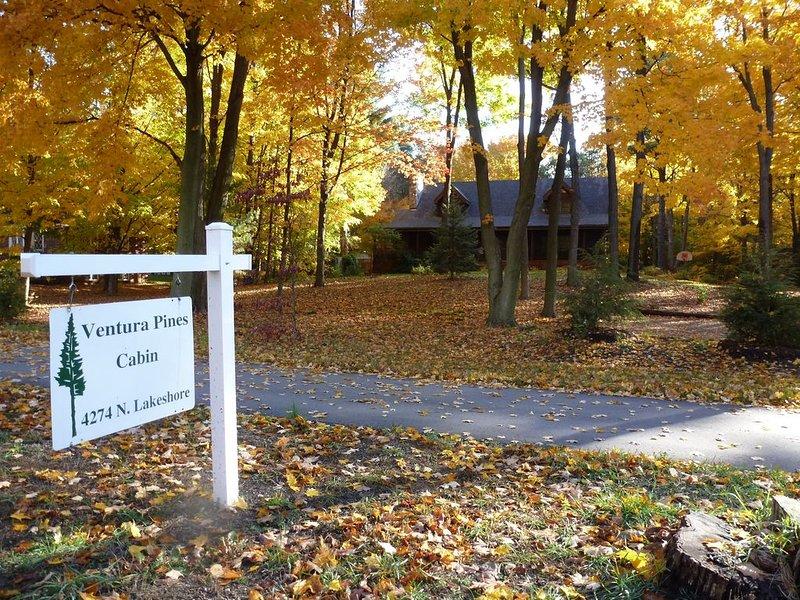 La cabane en rondins Ventura Pines Cabin est d'une élégance rustique sur 1,2 hectares boisés.