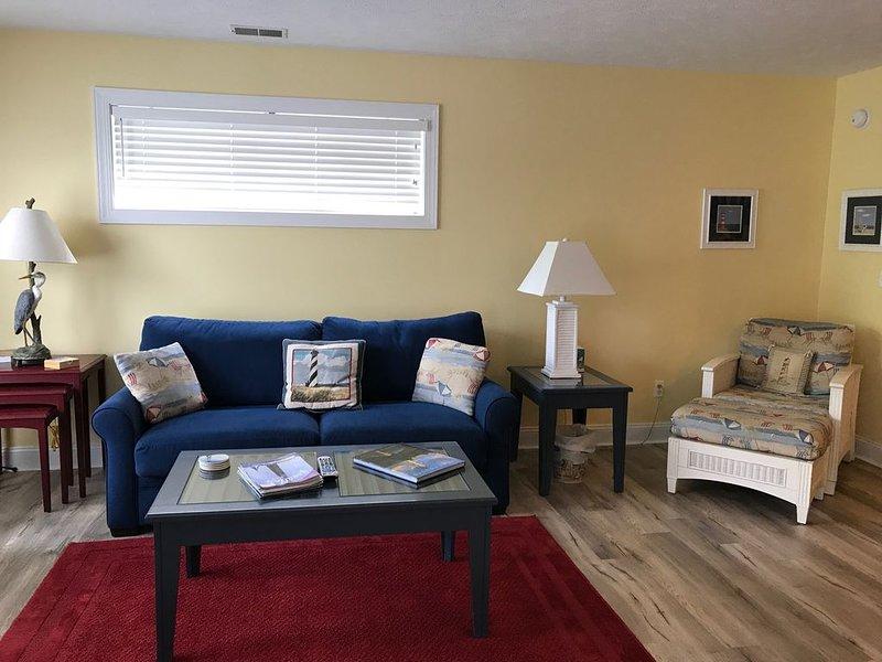 Salon avec canapé-lit avec matelas haut de gamme.
