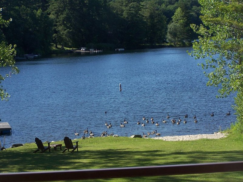 PRIVATE LAKEFRONT BEACH PROPERTY ON GOOSE POND  near TANGLEWOOD, location de vacances à Berkshires