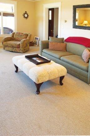 Living room and sleeper sofa