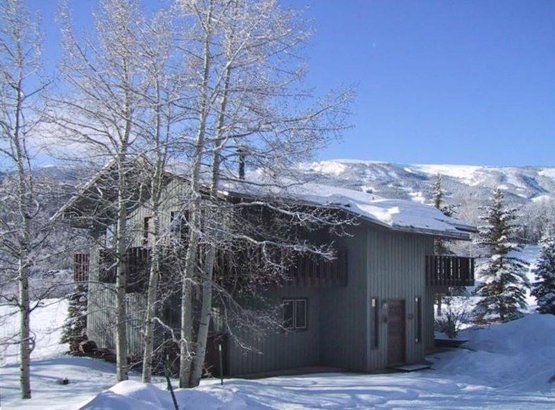 Snoke Chalet -Your Home in Snowmass, casa vacanza a Snowmass Village