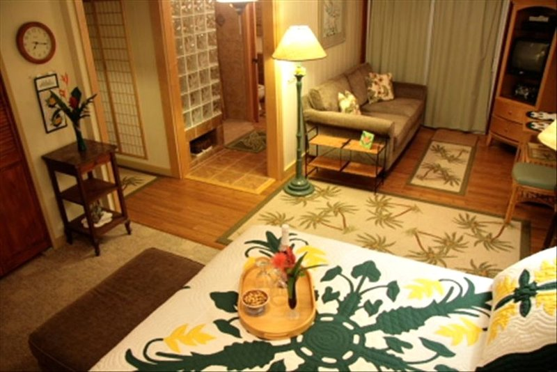View of Bed & Living Area. Bathroom and Kitchenette Entrances.