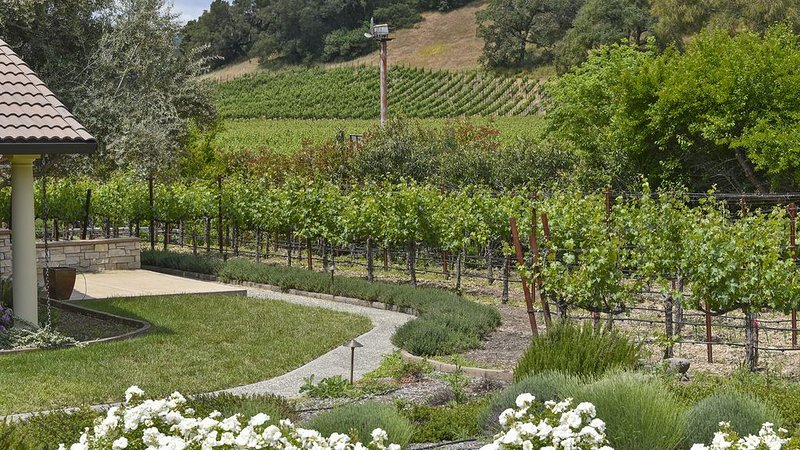 Stunning  Vineyard View Home on Iconic Silverado Trail in Beautiful Napa Valley, holiday rental in Yountville