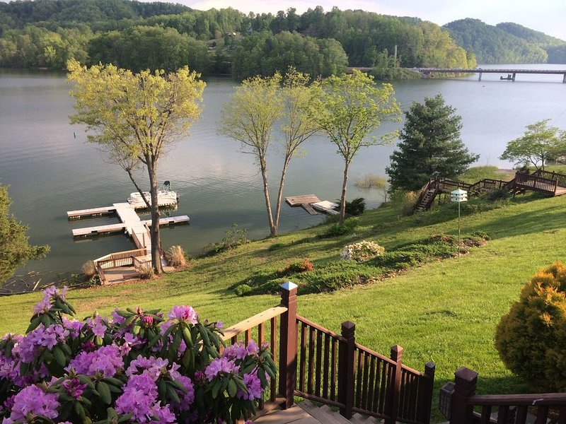 Social Distancing at its BEST on Lake near Creeper Tr- Hot Tub, Firepit, Pontoon, holiday rental in Glade Spring