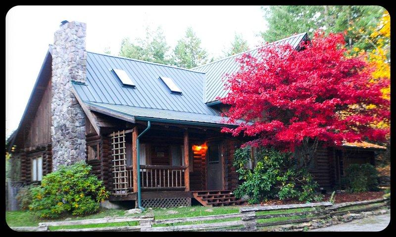 Bear Lodge Log home by Mt. Rainier/WhitePass 4BR2.5BA/views/firepit/hot tub/wifi, holiday rental in Packwood