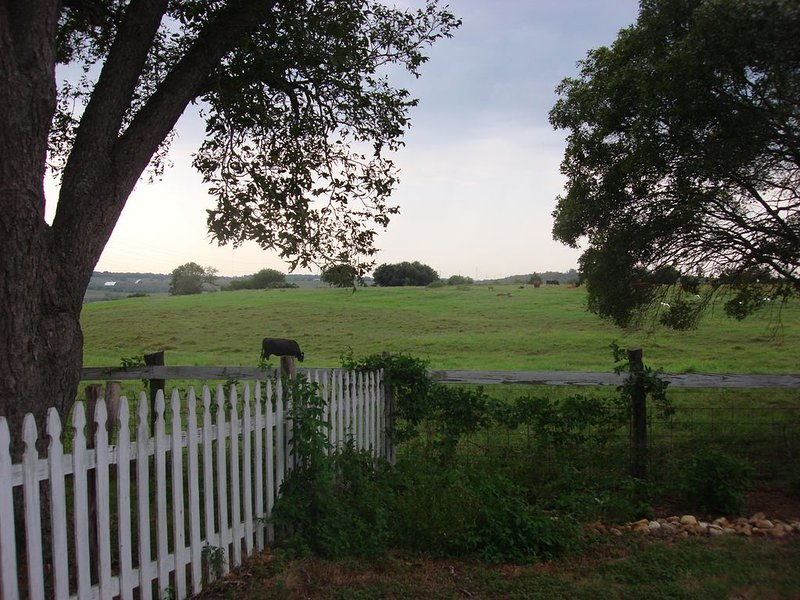 10 Minutes to San Marcos, New Braunfels or Seguin - Family and pet friendly, vacation rental in San Marcos