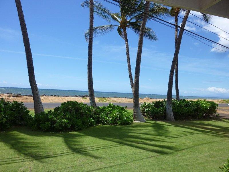 Ocean Front..Hale Kekaha Palms at the Beach...Air Conditioned  -  TVNCU #1004, location de vacances à Kekaha