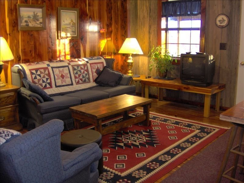 Mount Magazine View Cottage/Cabin - A Great Escape in Arkansas, holiday rental in Paris