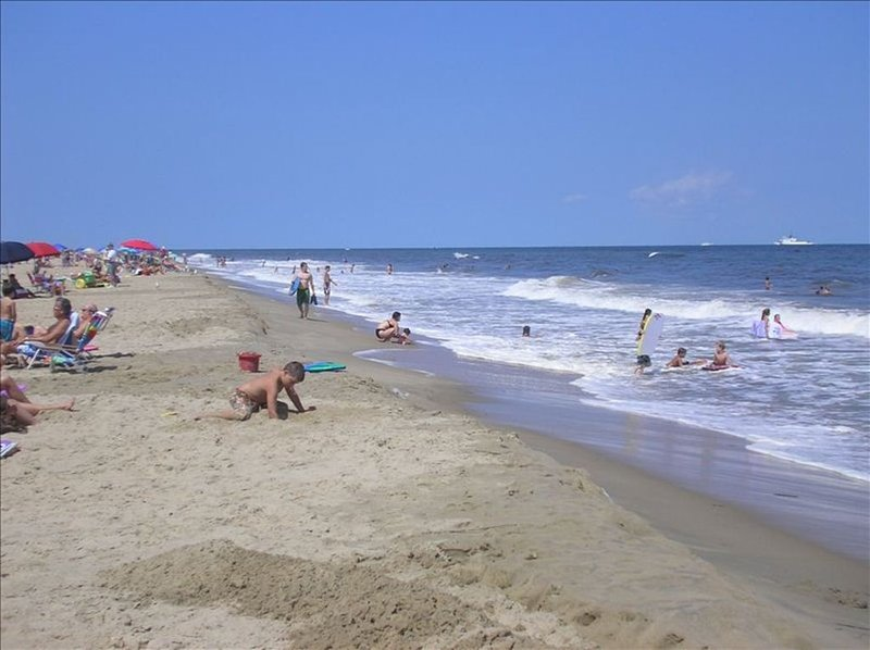 The North End of Va. Beach has the widest, prettiest beaches in the area !