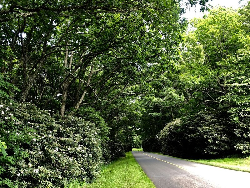 We're just off the Blue Ridge Parkway.  Come escape to our Appalachian paradise.