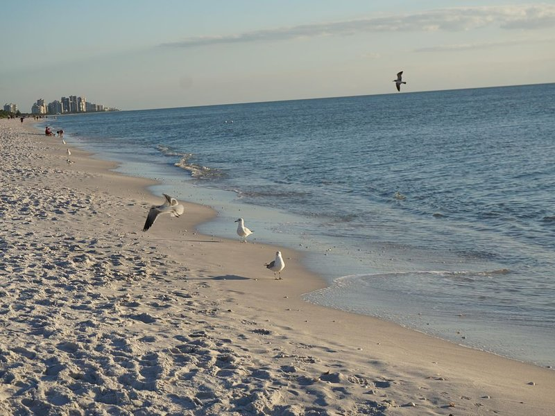Fantastic Location to enjoy the Upscale North Naples Experience, holiday rental in Vanderbilt Beach