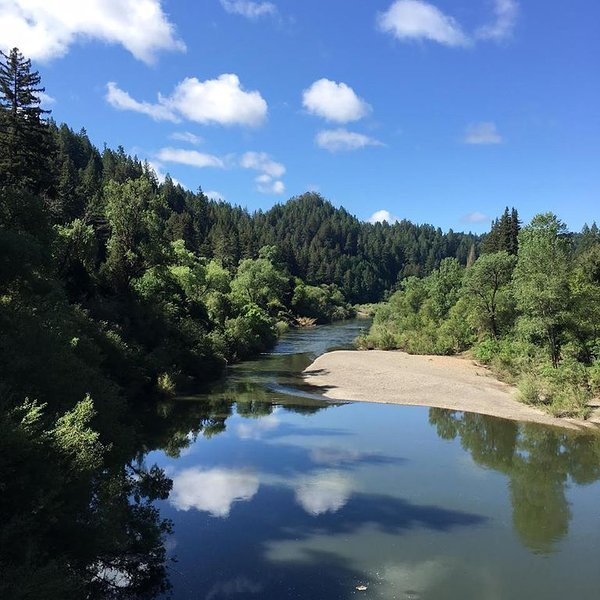 'Happy Days'Walk to Everything!River.Armstrong Woods!, holiday rental in Guerneville