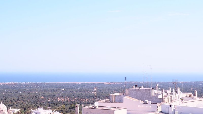 View of the Adriatic Sea and olive groves from the rooftop terrace
