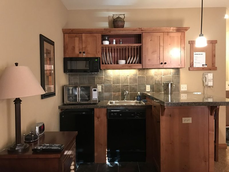 Del Studio Slp 4 w/View 332, holiday rental in Kellogg