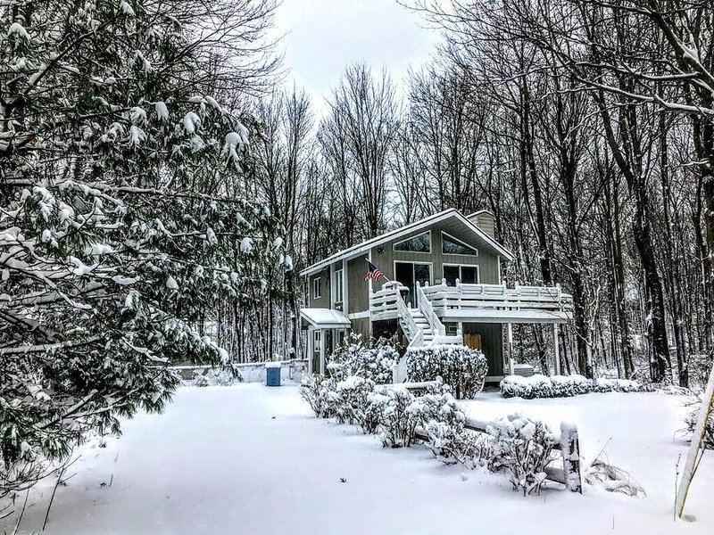Beautiful  cottage in secluded  wooded setting near Lake Michigan and Saugatuck, vacation rental in Glenn