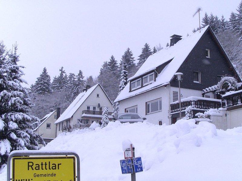 Spacious Apartment in Rattlar near Forest, location de vacances à Schwalefeld
