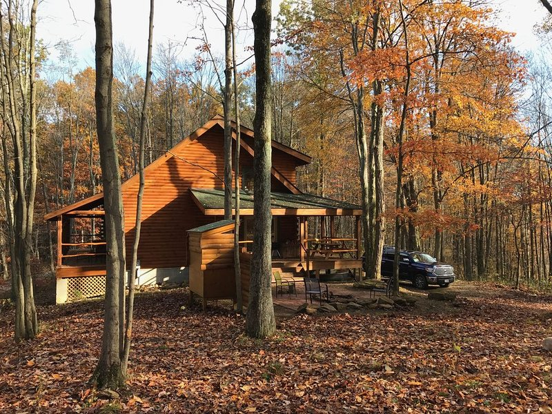 Secluded Luxury Log Cabin on 40 Acres Near Tygart River & Lake, vacation rental in Elkins