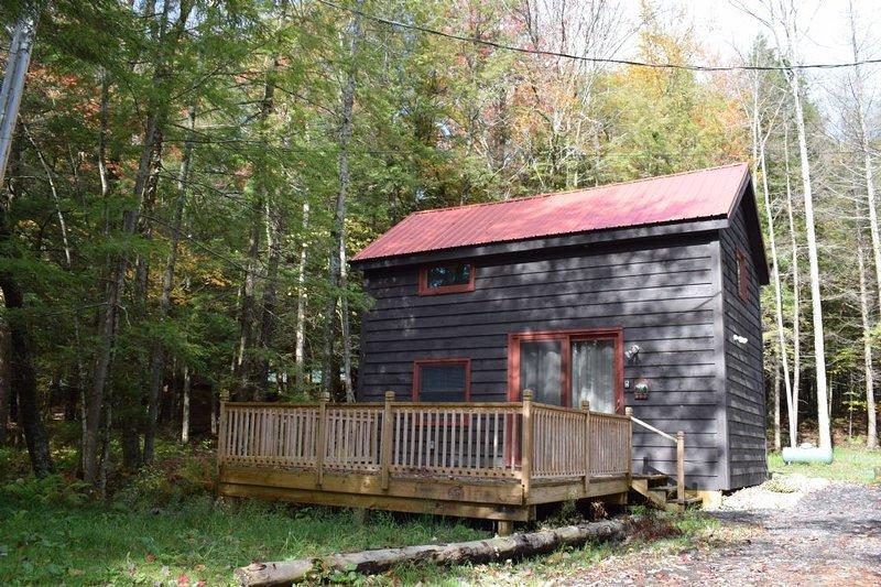 Palmer Point - The Study, location de vacances à Old Forge