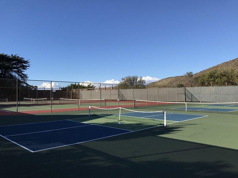 Pickleball y canchas de tenis
