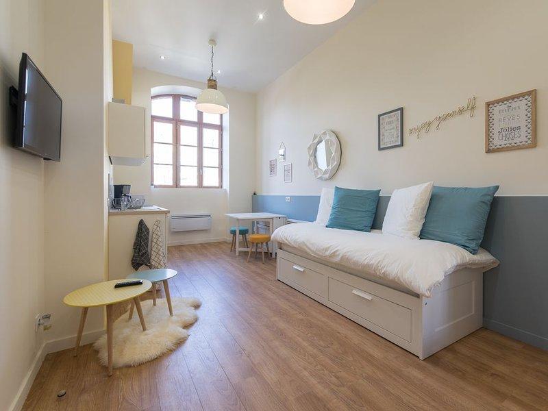 Loft Scandinave RICHELANDIÈRE, Neuf, très lumineux, cozy, vacation rental in Saint-Etienne