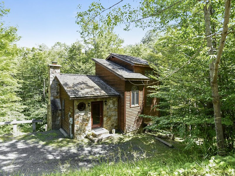 Zeeplace has it all!  In the Heart of Canaan Valley!, alquiler vacacional en Upper Tract