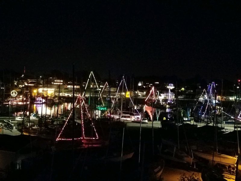 Harbor lights during the holidays