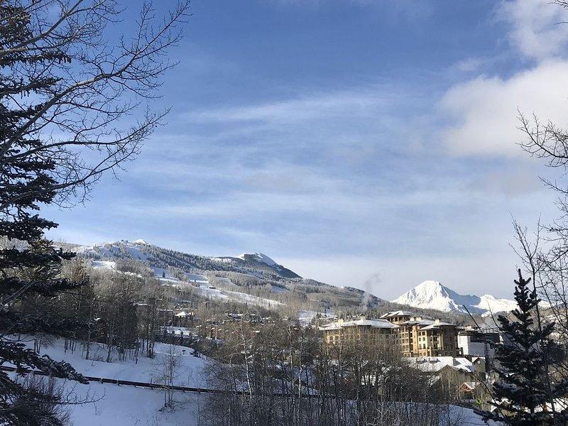 NEWLY RENOVATED - 3BR/3BA Snowmass Village, location de vacances à Snowmass Village