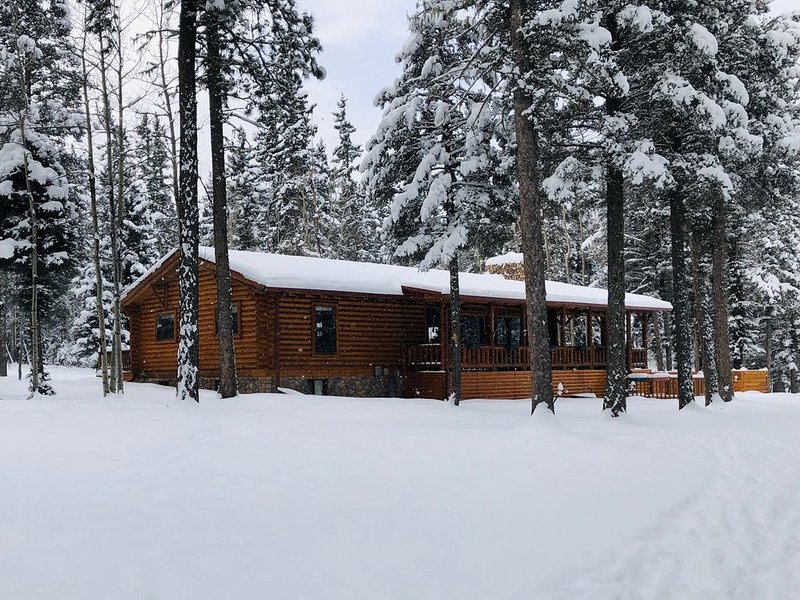 Lazy Dog Lodge is the quintessential log home in a ski and mountain bike resort, vacation rental in Angel Fire