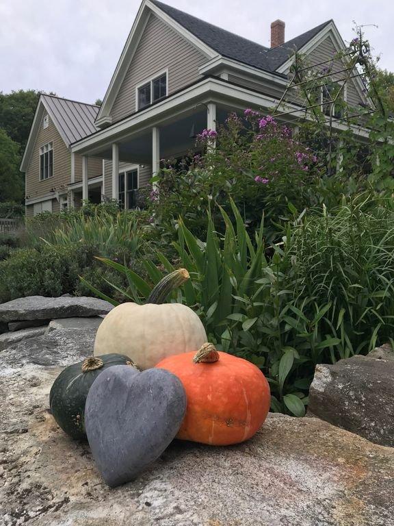 L'automne est un mois chaud et sec avec des couleurs abondantes - venez à Pumpkin Fest