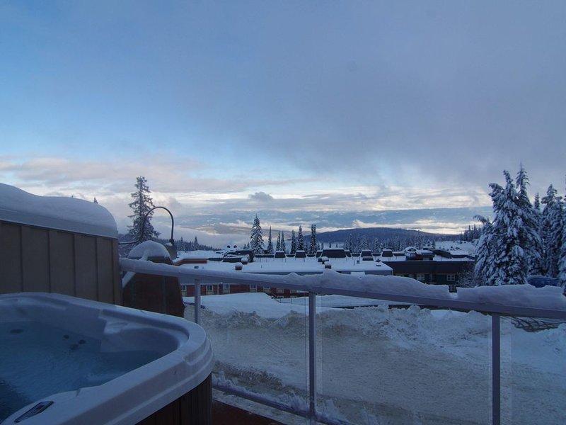 Une vue imprenable sur les Monashees depuis la terrasse et le bain à remous privé!