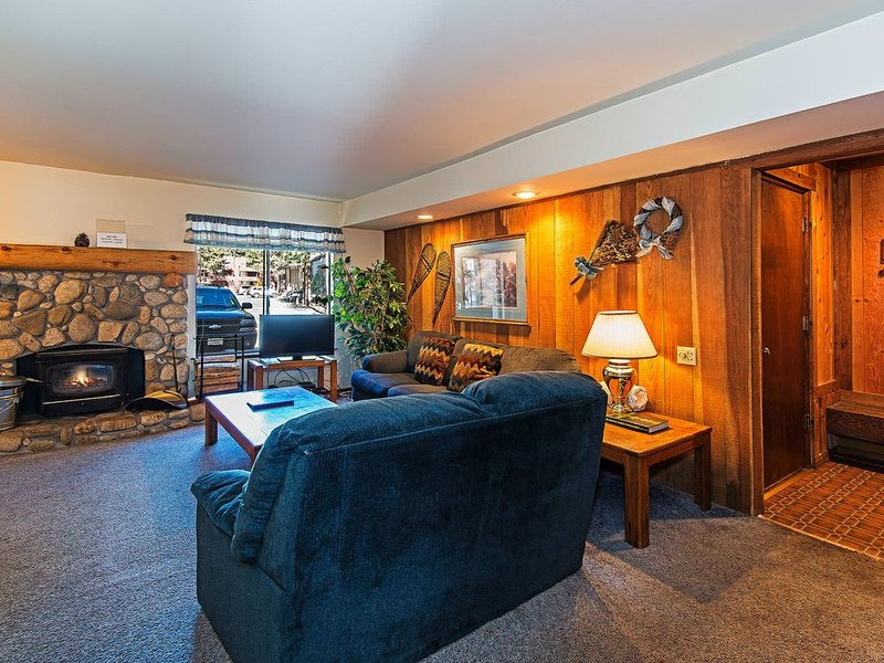 Living room w/ sofa sleeper, TV, DVD player, wood burning fireplace
