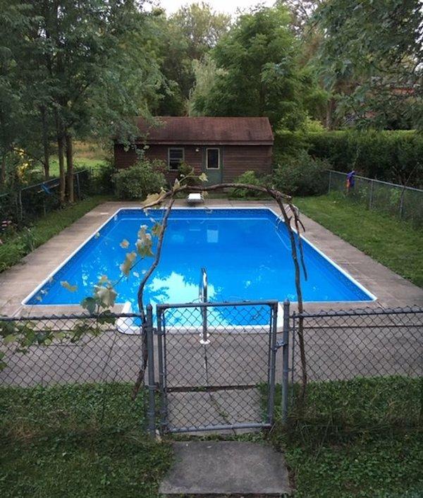 en été, les vignes poussent autour de la piscine.