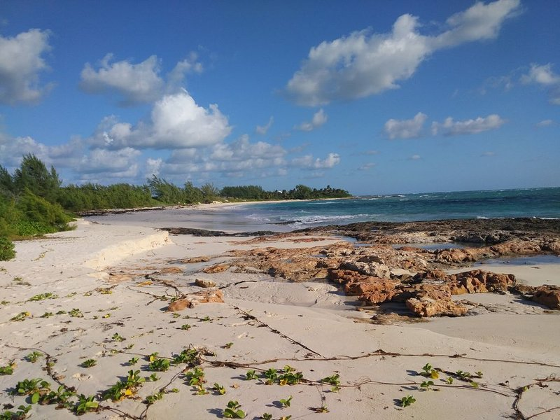 A nature lovers retreat, Western New Providence. 4 min to Stuart Cove Diving!, vacation rental in Nassau