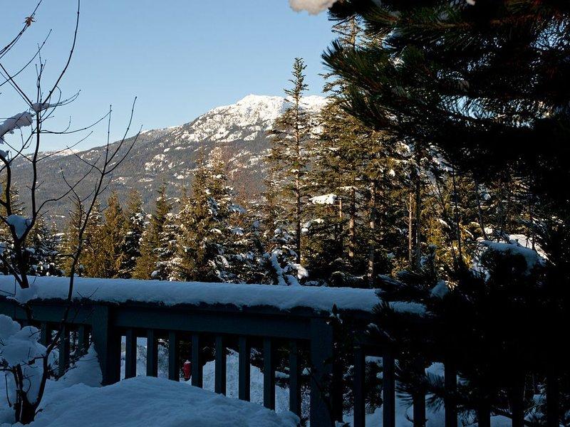 Vue sur la montagne depuis le pont