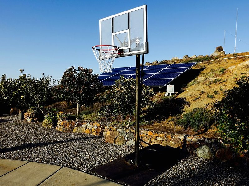 Basketball hoop on the driveway