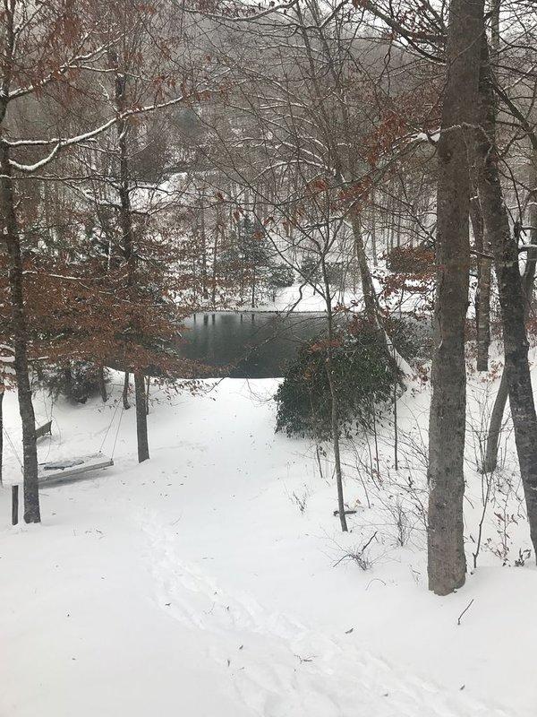 Winteransicht unseres Teiches Nr. 1 von 2