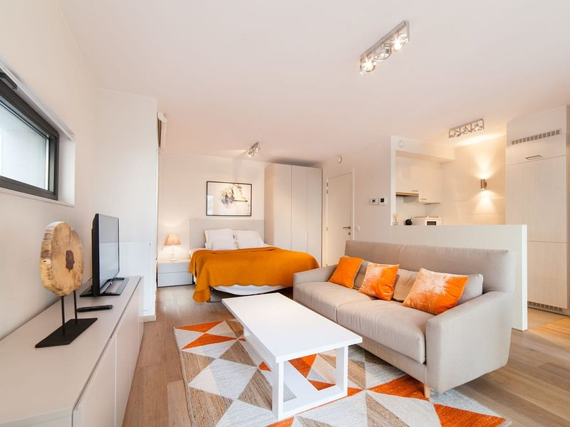 Cygnes II - Studio Appartement, Couchages 2, alquiler de vacaciones en Auderghem