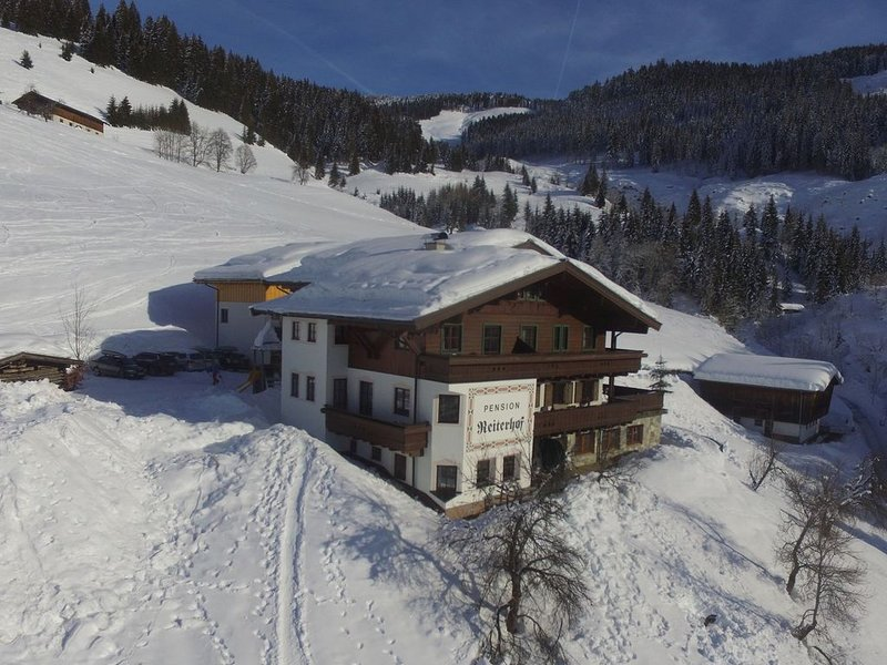 Holiday home in sunny location close to the ski lift and slope (ski in ski out), location de vacances à Maria Alm