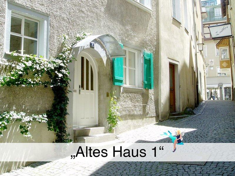 Gemütlich und zentral in einem denkmalgeschützten Haus auf der Insel Lindau, holiday rental in Bregenz