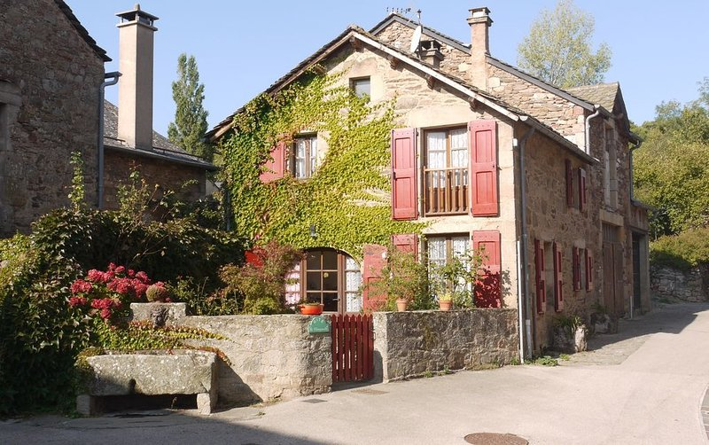 Cottage in medieval village near Millau, holiday rental in Aveyron