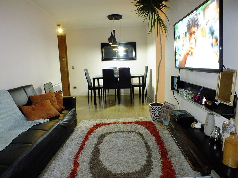 Enjoy The Properties Of Living In The Center Of The City (Santiago Centro), holiday rental in Santiago