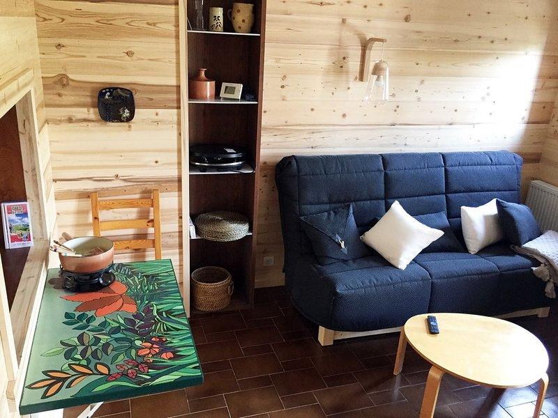 Spacieux duplex 64m2 au Chinaillon, classé 3 étoiles, face domaine skiable, location de vacances à Le Petit-Bornand-les-Glières