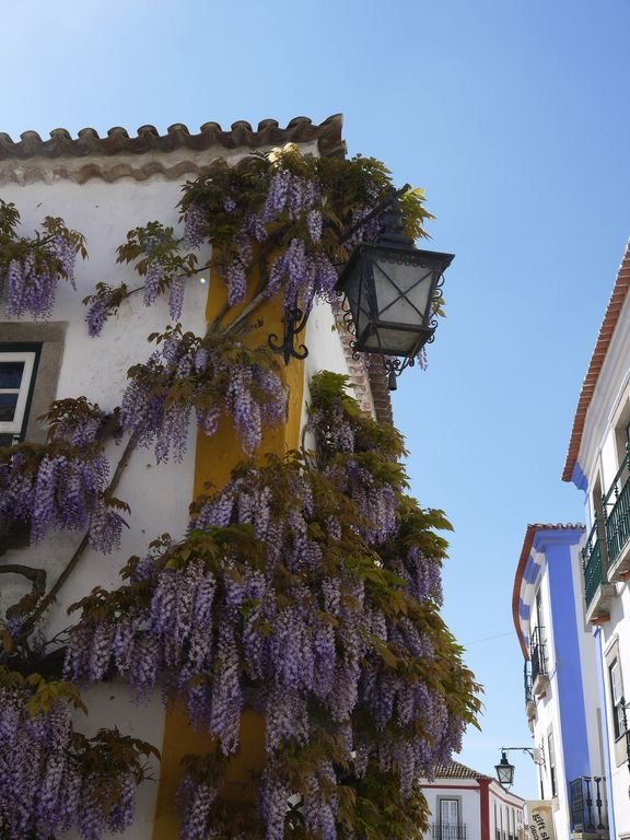 Obidos streets, 15 minute drive by car