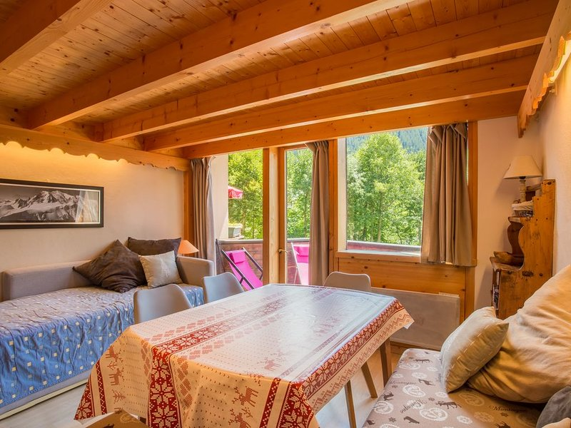Argentière, Duplex charmant, plein sud au pied des pistes, holiday rental in Chamonix