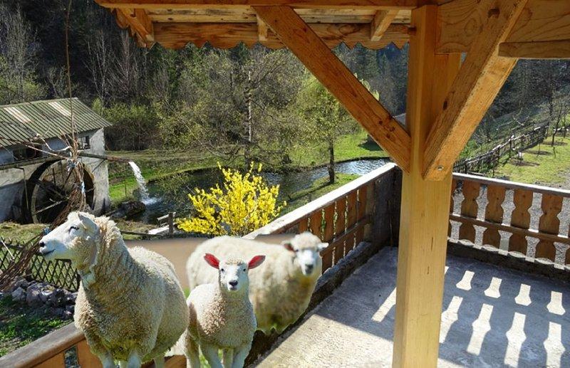 Annecy Talloires , Chalet de LA SCIERIE cadre exceptionnel calme assuré, location de vacances à Montmin